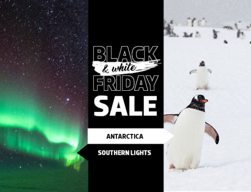 Black & White Friday Sale is on Now